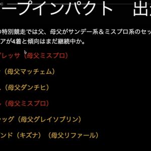 【日本ダービー】ディープインパクトの法則