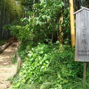 【続・佐倉城】KEIのお城写真館 大手門跡~ひよどり坂へ