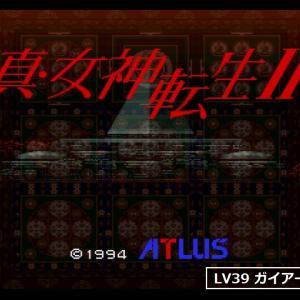 【真・女神転生Ⅱ】ガイアーズ カメンヒジリ/悪魔事典mini #66