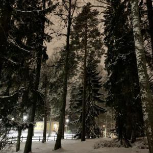 ヘルシンキにも遂に雪が