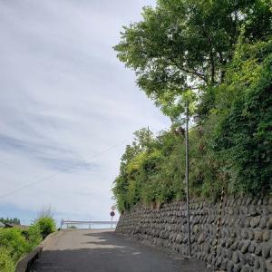 仙台の高台からの景色つづき