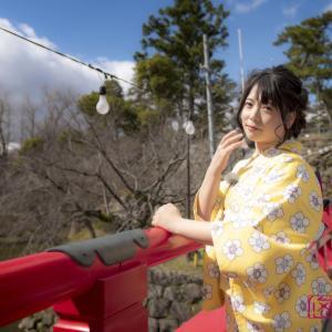 桜を着物で満喫。 春のお出かけ撮影プラン