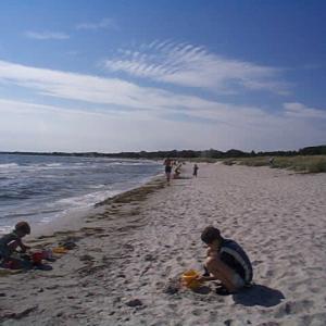 Höllvikenの海