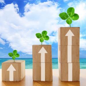 インデックスファンドに長期投資して配当再投資することが簡単な投資手法を考えている人に。
