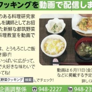 公報よこはま都筑区版にて「都筑野菜クッキング」動画告知始まりました!
