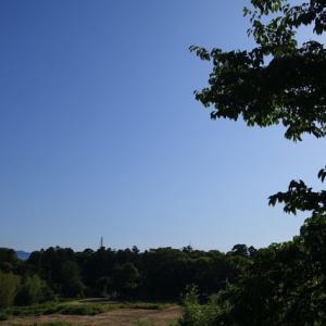 「無為の境地 (慈8) 」(oji3のブログ53)