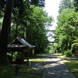 「澄まして見する   (慈34) 」(oji3のブログ79)