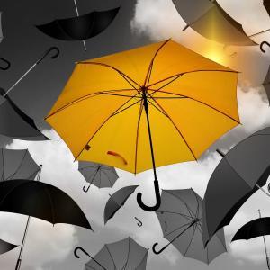 人生に必要なものを他人に決めさせてはいけない!あなたはどうなりたいですか?