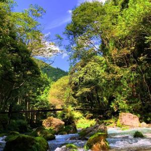 岐阜県山県市の方の川♪
