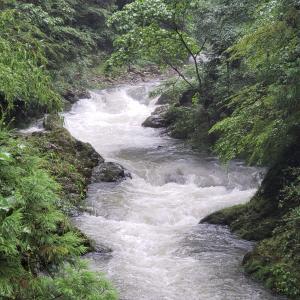 出戸川の視察