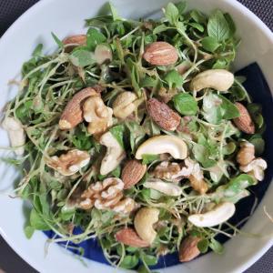 金胡麻の間引きと金胡麻スプラウトのサラダ
