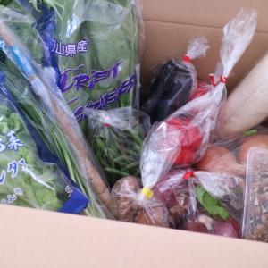 野菜の高騰につき。