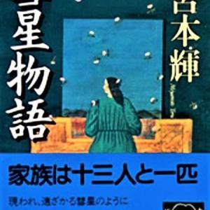 宮本輝-彗星物語