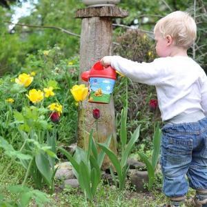 「植物を育てる=子育ての秘訣に気付く」3児の母の子育て迷走記