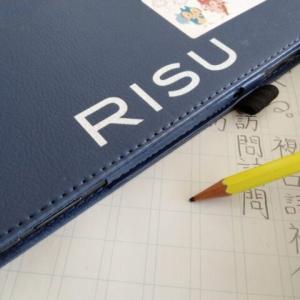 RISU算数小6 受講11か月進まない先取り学習 だけどいいこと