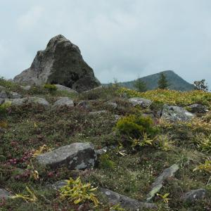 烏帽子岳、湯ノ丸山*レンゲツツジにはもう少し