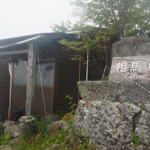 榛名相馬山のレンゲショウマとゆうすげの道 2020.08.08