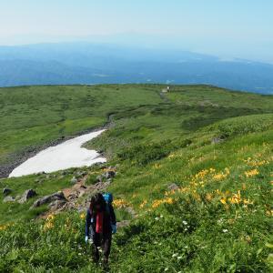 【鳥海山】 念願だった素晴らしき展望と花々達