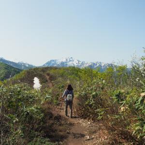 【大力山】食材探してのんびり山歩 2021.05.04