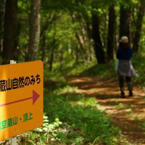 【虚空蔵山】道の駅ヘルシーテラス佐久南からハイキング 2021.05.09