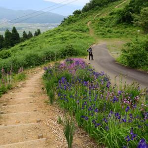 【藤権現山~房ヶ沢山】小出スキー場尾根歩き 2021.06.13