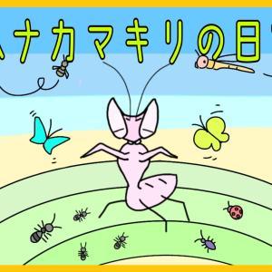 『ジャングルで生きる。ハナカマキリの一生に密着!』【昆虫物語】part1