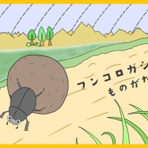 『なんでフンを転がすの?フンコロガシの生活』【昆虫物語】part1