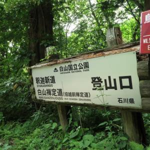白山 登山道ガイド 2020