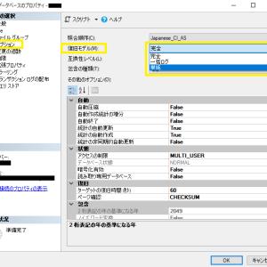 エラー 9002、17053 の対処方法 [SQL Server]