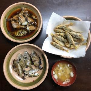 釣った魚を料理してみました。