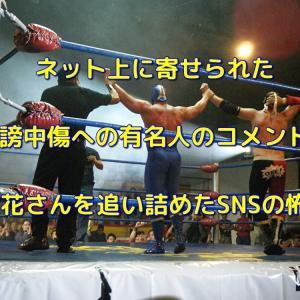 ネット上に寄せられた誹謗中傷への有名人のコメント!木村花さんを追い詰めたSNSの怖さ!