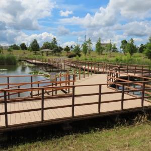 上総更級公園の修景池