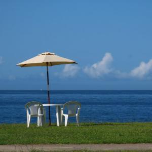 漁港食堂「だいぼ」から見える海の景色
