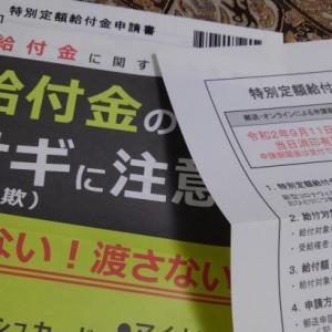 10万円の申請書類が届きました