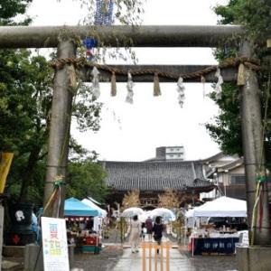 浅草神社 7月限定 夏詣 うさぎの御朱印
