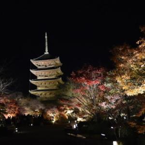 晩秋の京都【5】東寺 幻想的なライトアップは別世界!!