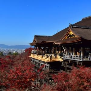 晩秋の京都【6】清水寺 12年間に及ぶ改修工事が終わった!!