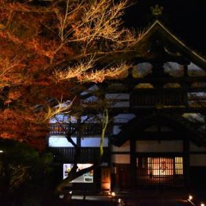 晩秋の京都【10】高台寺 紅葉ライトアップとプロジェクションマッピング