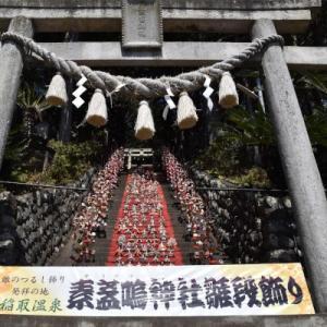 東伊豆 ひな祭りツアー 素盞嗚神社(すさのおじんじゃ)