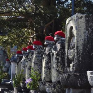 東伊豆 ひな祭りツアー 清光院 と 済広寺