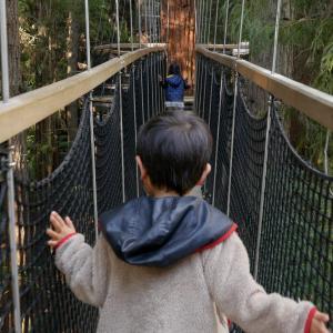ニュージーランド北島の旅、ロトルア(後編)