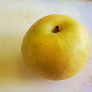 20世紀梨。