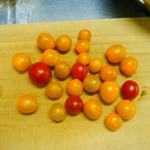 トマトと自家製ハーブがおいしい話。