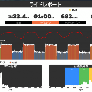 2020/5/29 Zwift The Gorby + ツバメ