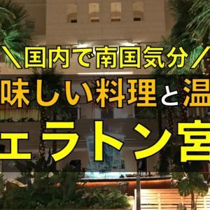 温泉でまったり|シェラトングランデ宮崎に宿泊で南国気分を楽しむ!