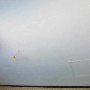 キッチン天井のペンキを塗りました