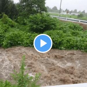 【須川のライブカメラ映像(山形)】水位や氾濫状況、対策を調査!