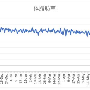 ボディメイクの週間報告32週目(6/14-6/20): 体脂肪が跳ね上がったけど、計測ミスですかね・・・。