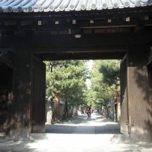 一休さんのお寺へ!京都紫野・大徳寺と日本三大精進料理『大徳寺流』