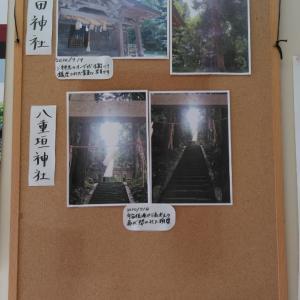 今日も観光案内所は賑やかでした。稲田神社でスゴイ写真が撮れました。